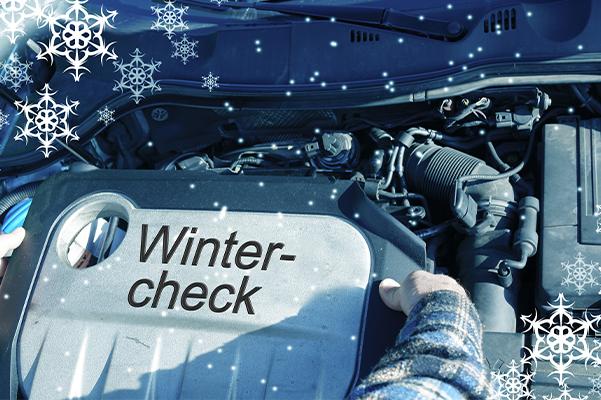 Auto Wintercheck