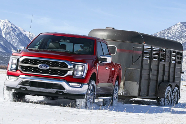 A 2021 Ford F-150 towing a horse trailer through the snow