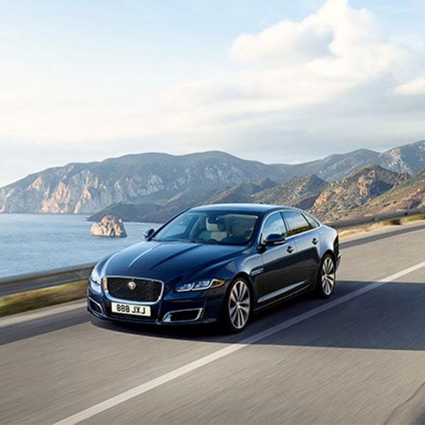 Jaguar driving down road